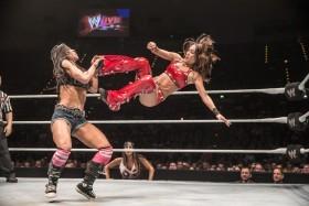 w_01_WWE-Live-104722-06122013