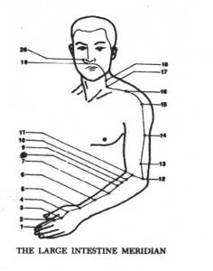 Pressure Points on the Large Intestine Meridian