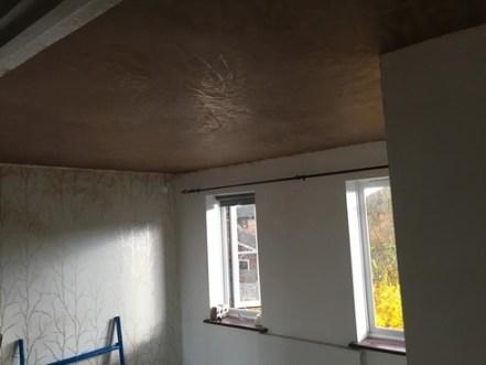 plastered ceiling