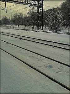 Nulla è meglio di una partenza mattutina verso il prossimo show… in una tormenta di neve!