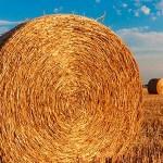 Finanziamenti europei all'agricoltura, Info utili
