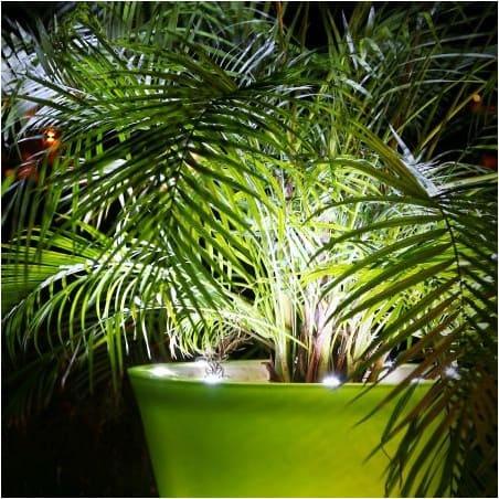 Acheter Pot Lumineux Led Pot Lumineux Design A Led Pas Cher Pot De Fleur A Led Pots Lumineux A Led