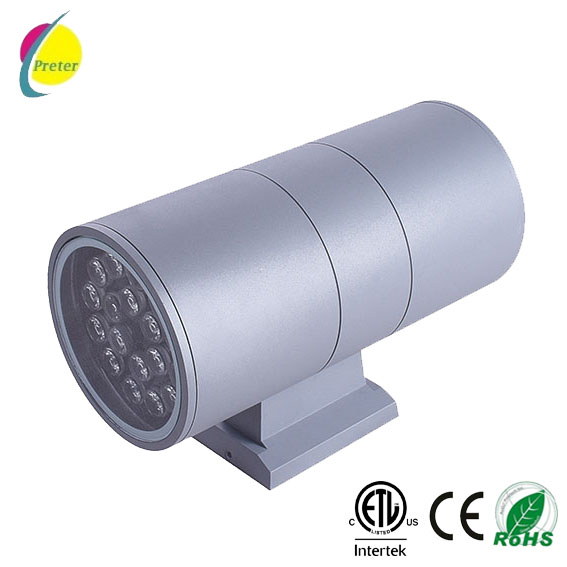 professional china led up down light supplier