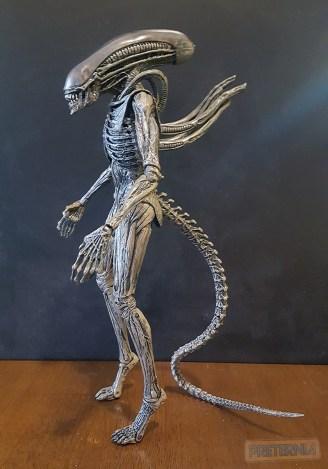 NECA Aliens Covenant Series (Neomorph, Xenomorph, Accessory Pack) Review