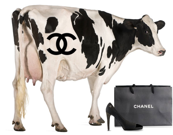 Chanel shoe with cow and logo
