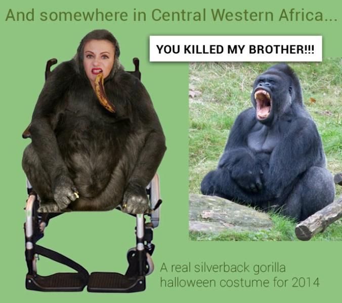 Real authentic silverback gorilla halloween costume