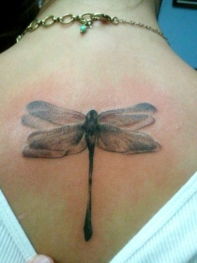 Pretty Dragonfly Tattoo Designs For Girls Pretty Designs
