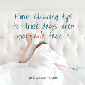 Home Cleaning tips ed for those days when you can't face it