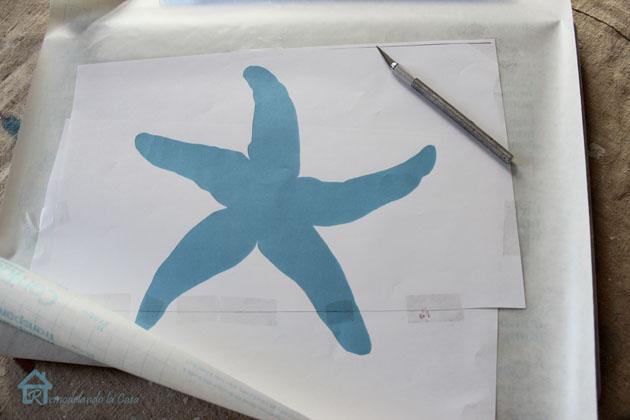 starfish profile