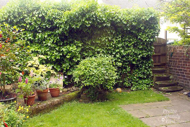 backyard_courtyard