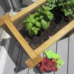 Scrap Wood Planter Box