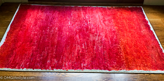 Painted-Rug-6-of-6-2