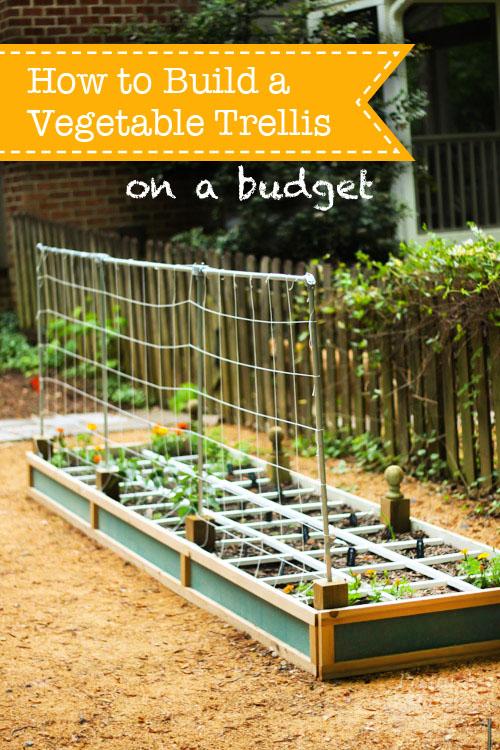 Merveilleux How To Build A Vegetable Trellis On A Budget   Pretty Handy Girl