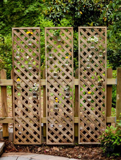 living-lattice-screen-privacy-wall