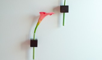 easy DIY test tube vases on the wall