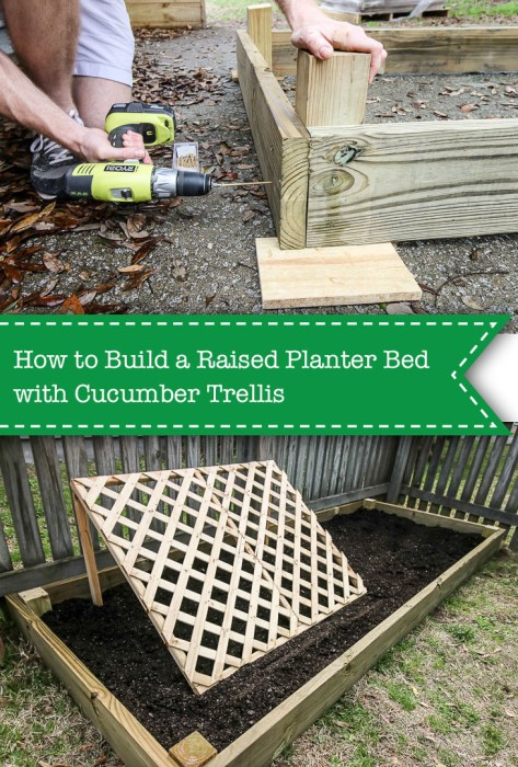 Raised planter bed and cucumber trellis