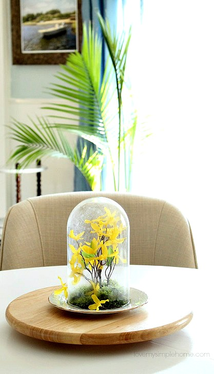 cloche-idea -for-spring-lovemysimplehome.com