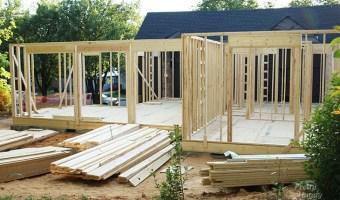 Saving Etta: Framing Progress