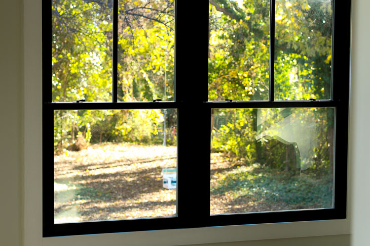 backyard view through windows