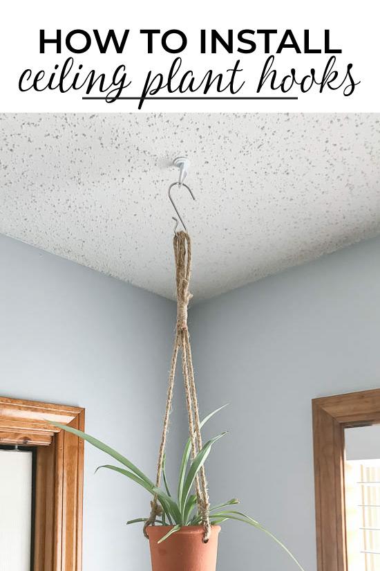 Installing ceiling plant hooks