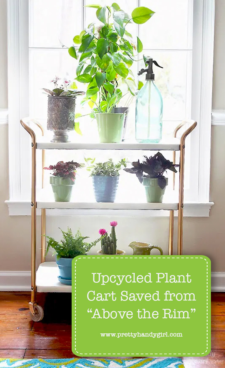 "Upcycled Plant Cart Saved from ""Above the Rim"" 