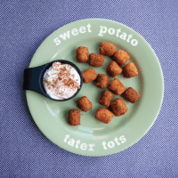 Sweet Potato Tater Tots with Cinnamon Cream Cheese Dip
