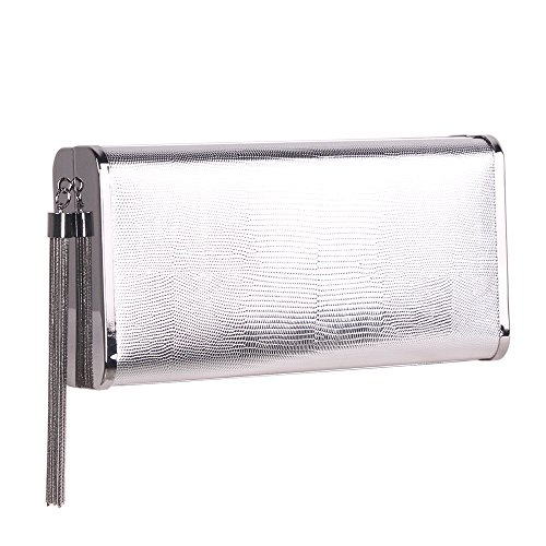 M10M15 Silver Clutch Purse Handbag with Metal Tassel for Women, Crossbody Evening Bag in Hardcase with Strap Chain for Party