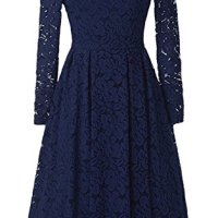 chouyatou Women's Retro Boatneck Lace Floral Fit-Flare Pleated Knee Length Cocktail Dress (X-Small, Blue)