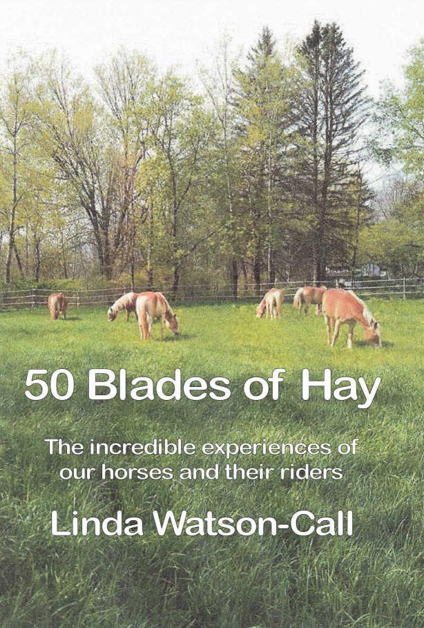 50 Blades of Hay