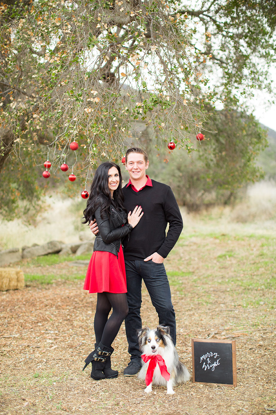 pretty-pure-christmas-allyssa-brandon4