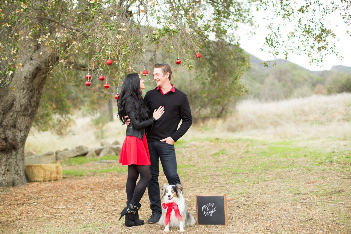 pretty-pure-christmas-allyssa-brandon5
