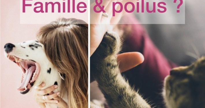 étude chat chien santé maladie et analyses