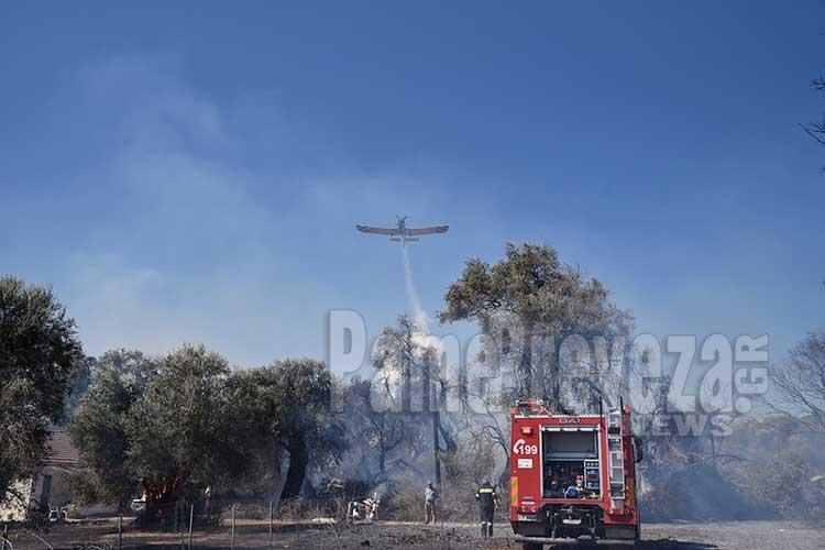 Πρέβεζα: Έκαψε μεγάλη έκταση η πυρκαγιά – Πυροσβέστες και εναέρια μέσα στην κατάσβεση για περισσότερο από 2 ώρες – ΦΩΤΟ_5e04f7a8eda5a.jpeg