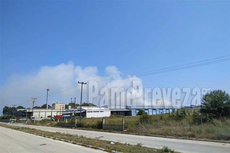 Πρέβεζα: Φωτιά στην περιοχή της ΒΙΠΕ_5e0504ce54045.jpeg