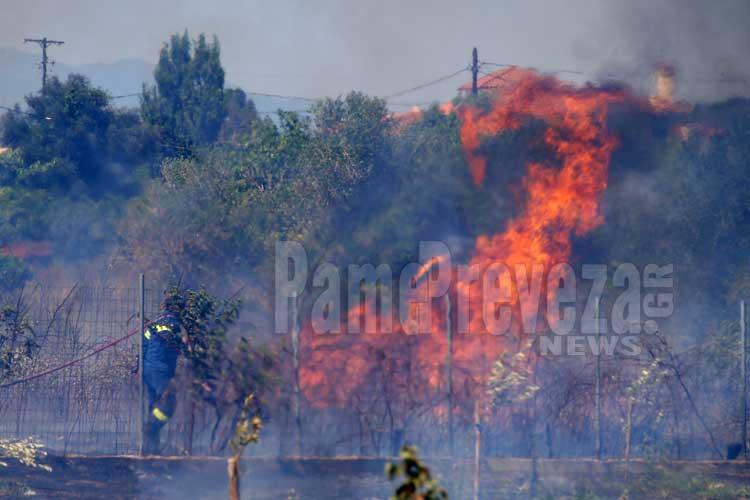 Σε κατηγορία κινδύνου 3, για εκδήλωση πυρκαγιάς, η Ήπειρος αύριο Τετάρτη_5e04ff795e189.jpeg