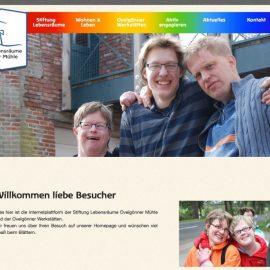 Stiftung Lebensräume Ovelgönner Mühle
