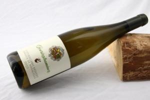 vini bianchi alto adige