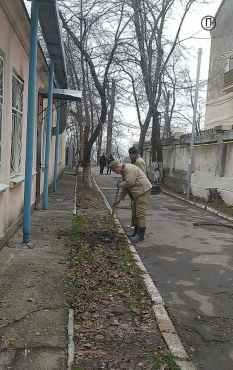 chrrnomorskaya44