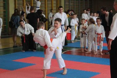 karate 13