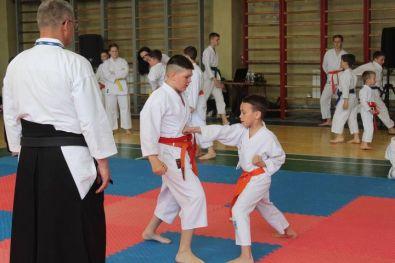 karate 20