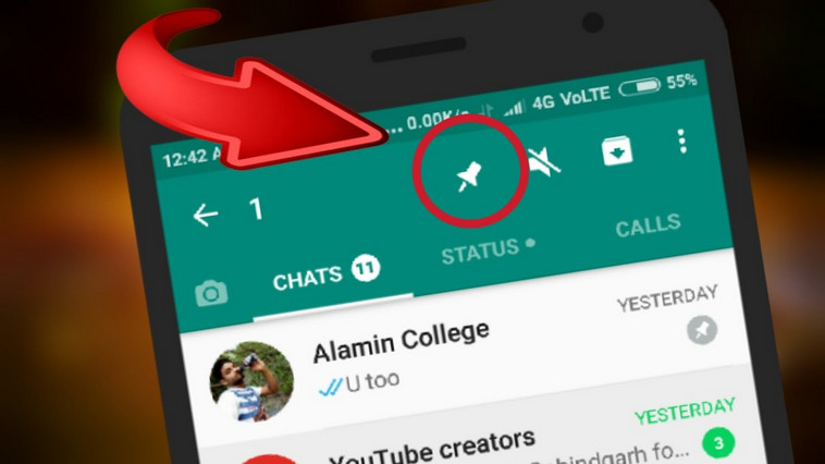 Whatsapp Launched Pin & Other New Features On Their Messaging App