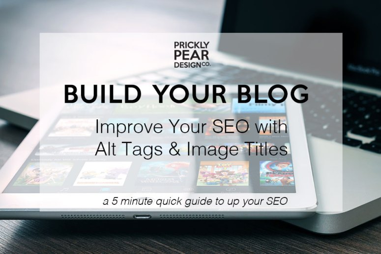 Improve Your SEO with Alt Tags & Image Tags   Prickly Pear Design Co.