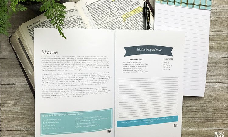 June Come Follow Me Scripture Study Guide – Priesthood & Priesthood Keys | Free LDS Young Women Printable