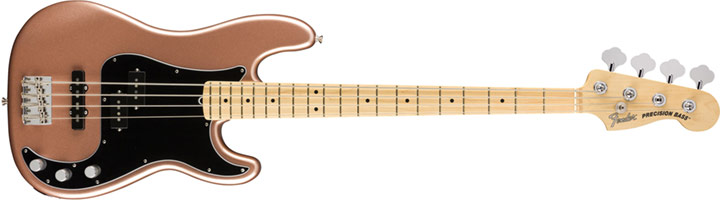 Fender Am. Performer Series