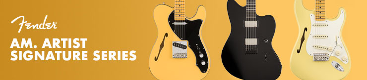 Guitarras Fender Am. Artist Signature