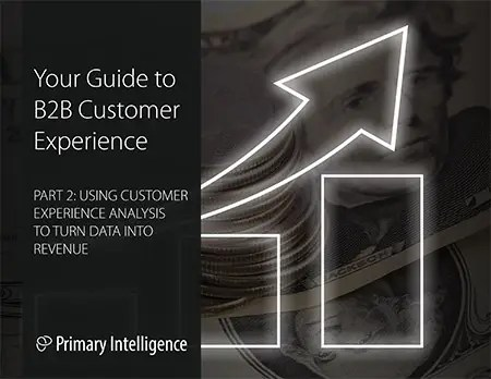 eBook: Guide to B2B Customer Experience 2