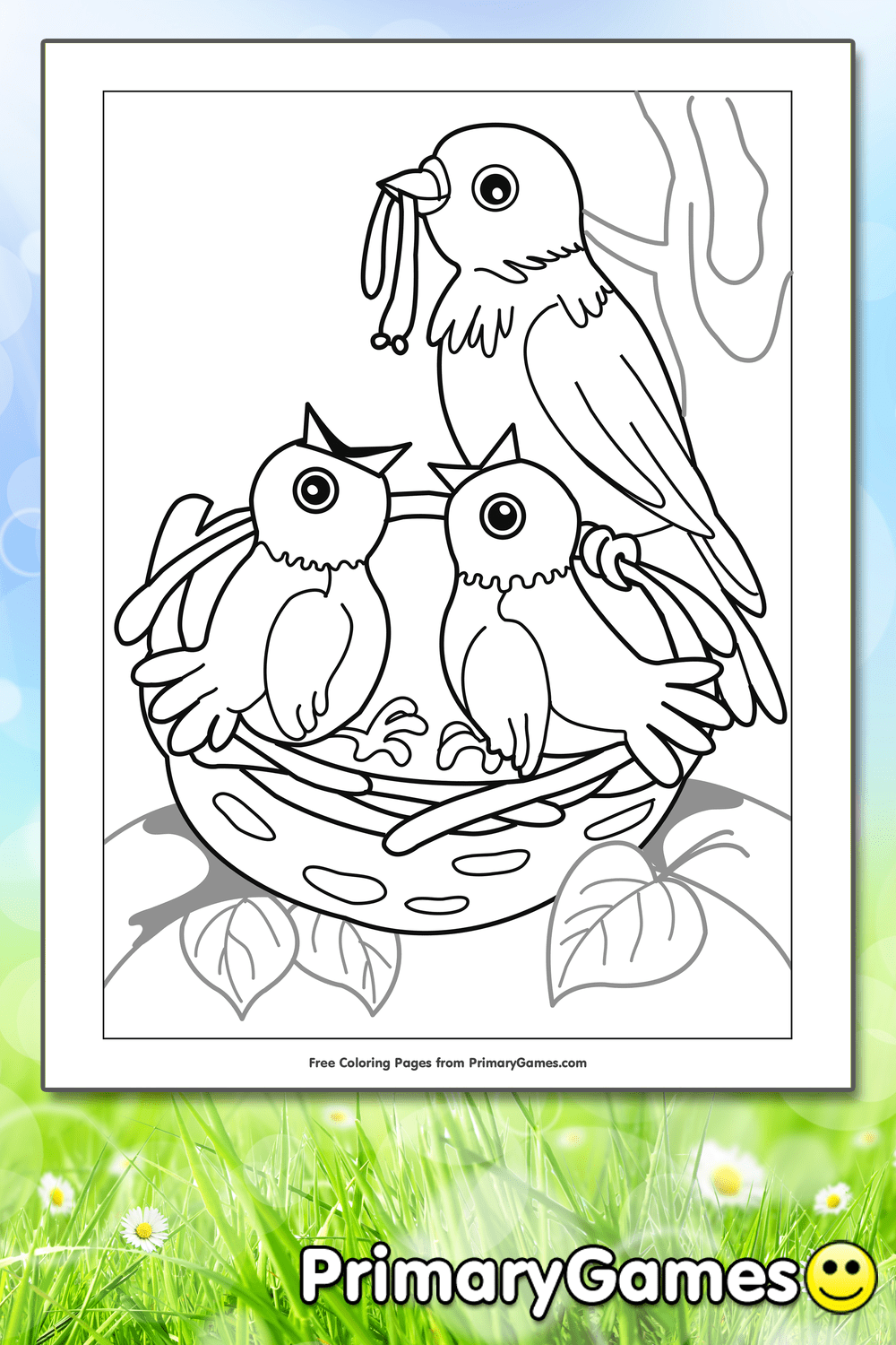 Birds In Nest Coloring Page Printable Spring Coloring