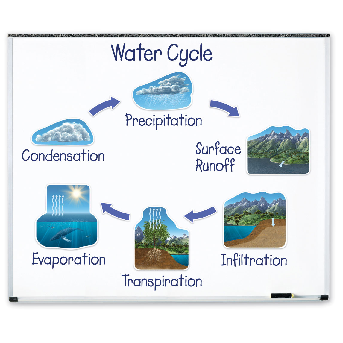 Box Damaged Giant Magnetic Water Cycle