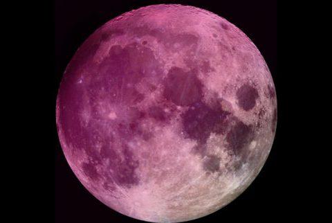 Sguardo all'insù, sta per arrivare la Superluna rosa: spettacolo unico, ecco quando sarà chiaramente visibile da noi.