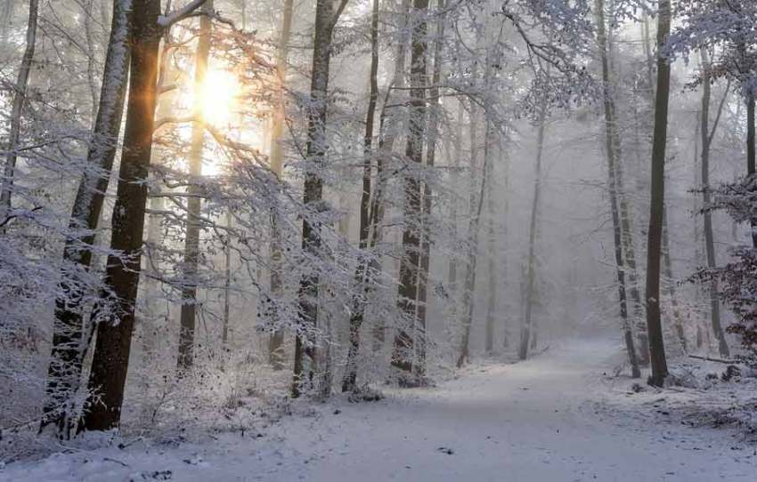 interesting facts about winter season